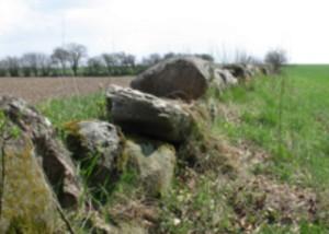 Sten i landskab