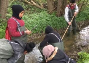 Børn undersøger åen