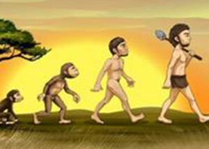 Fra abe til menneske